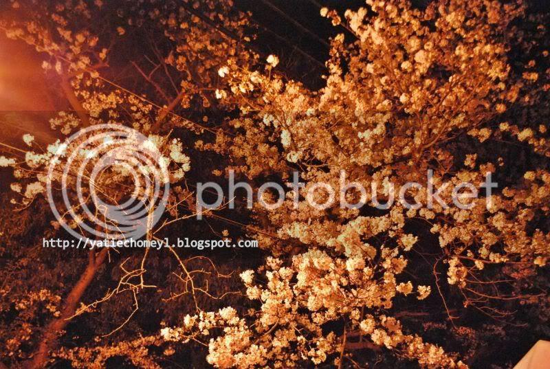 http://i122.photobucket.com/albums/o262/dasar_chomeyl/DSC_0076-1.jpg