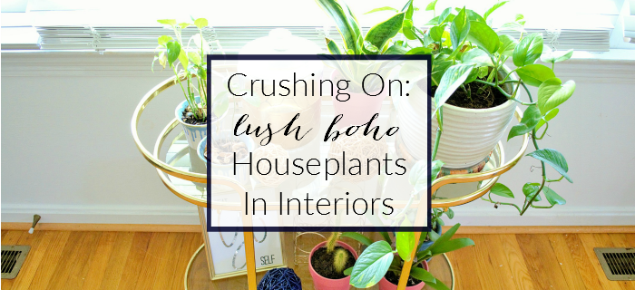 crushing on lush boho houseplants in interiors inspiration