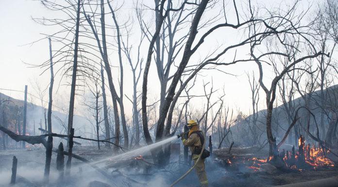 (Hình minh họa: Kevin Sullivan/The Orange County Register via AP)