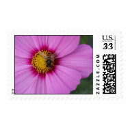 Pink Pollination Postage stamp