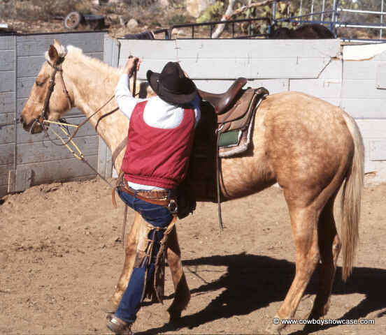 Teach A Horse To Stand Still For Mounting Cowboy Showcase
