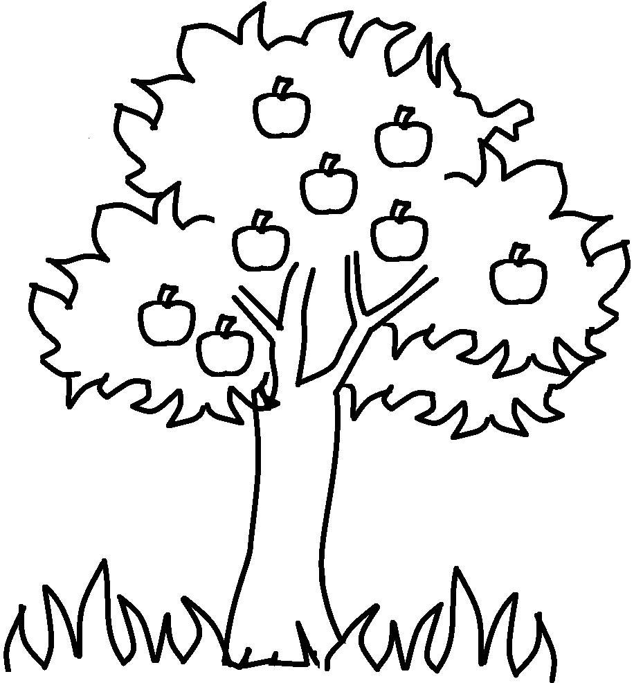 Elma 4 Sınıf öğretmenleri Için ücretsiz özgün Etkinlikler