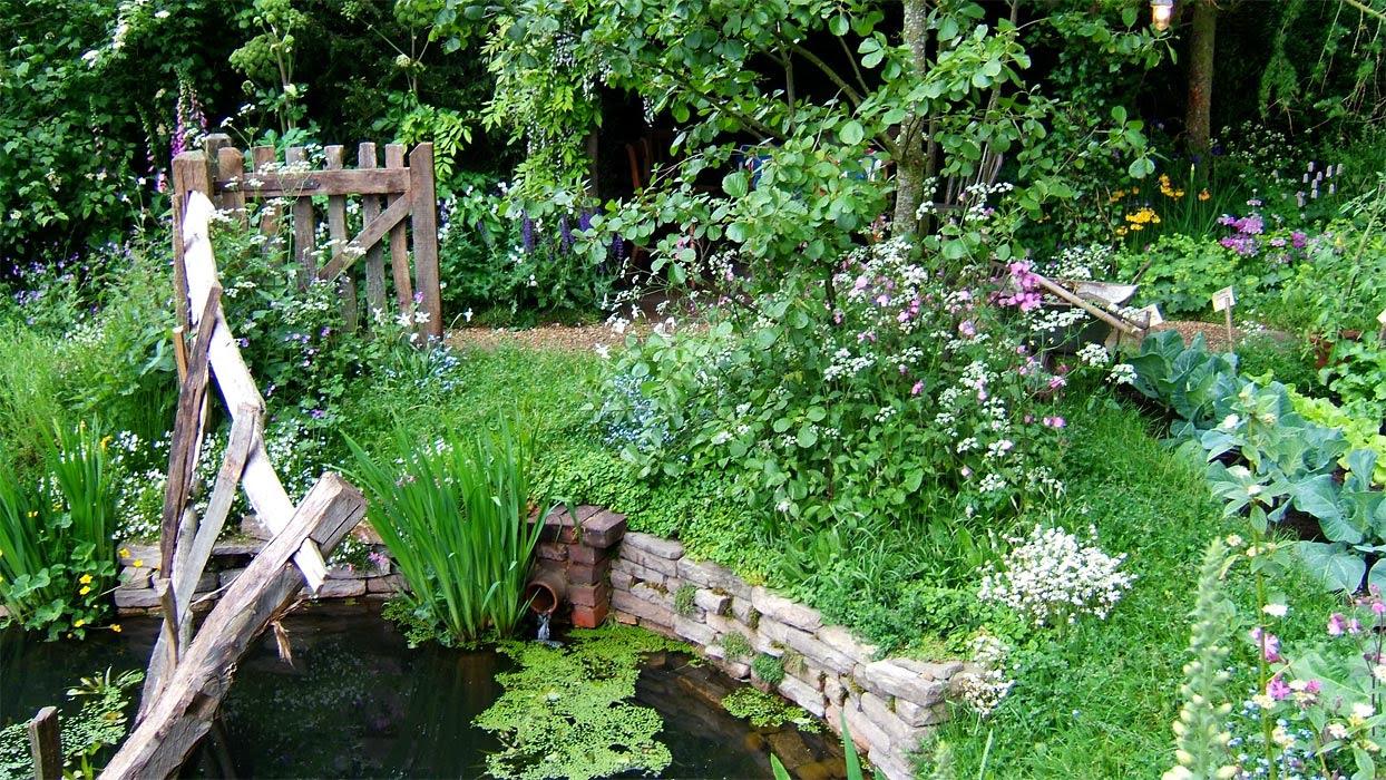 rustic garden pond