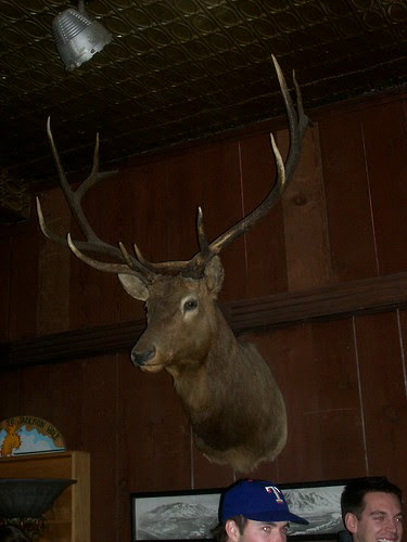 Deer head at the JH Playhouse