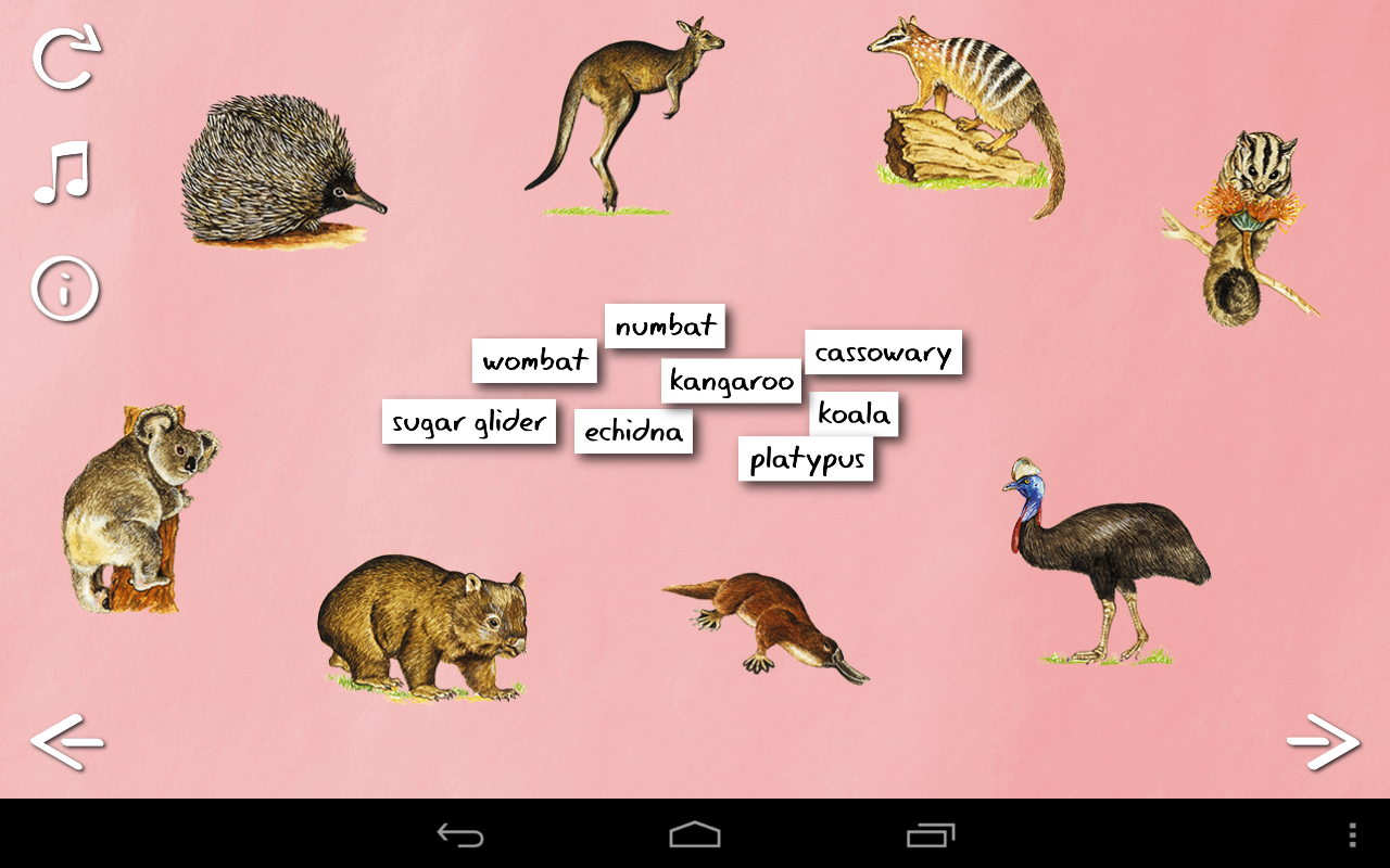 Animal That Starts With O Inspec Wallp Animals