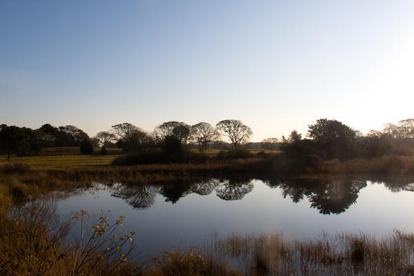 sweetened water pond
