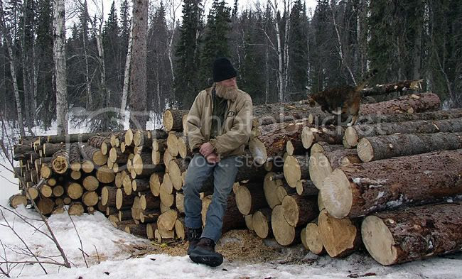 Most of our   firewood for the year