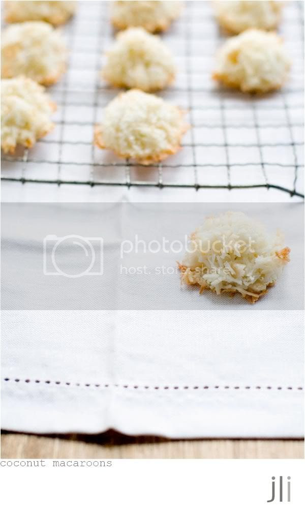 coconut and macadamia macaroons,bill granger,passover,jillian leiboff imaging,food photography,sydney