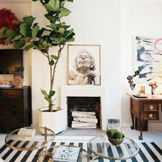 Ready For The Weekend: Home Decor :: Fiddle Leaf Fig Tree