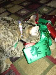 Maggie smells something good