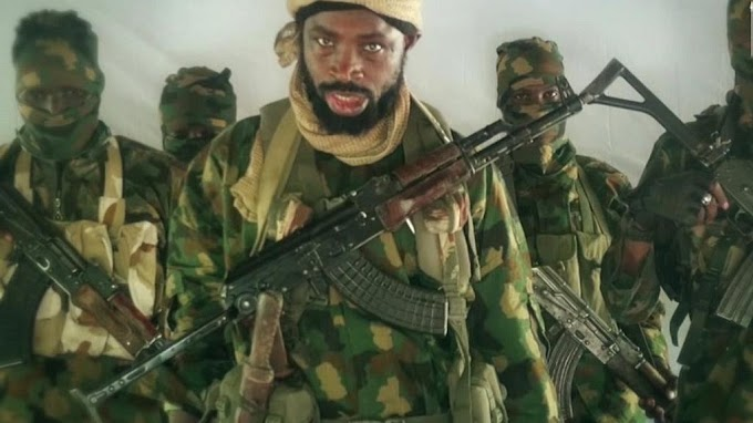Anywhere you see Isa Ali Pantami, don't spare him'' Boko Haram leader, Abubakar Shekau allegedly orders his men to attack Minister of Communication