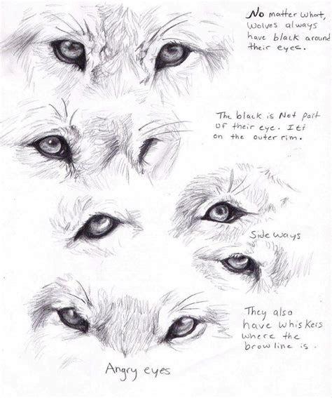 wolf eyes  adothwolf  deviantart character