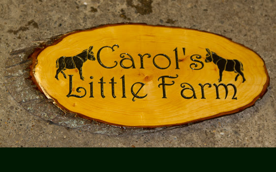 generator Signs, Wooden  Slices Timber The rustic Maker  sign Rustic  Sign