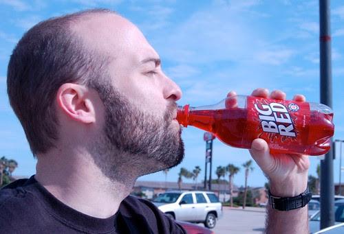 Soda Model