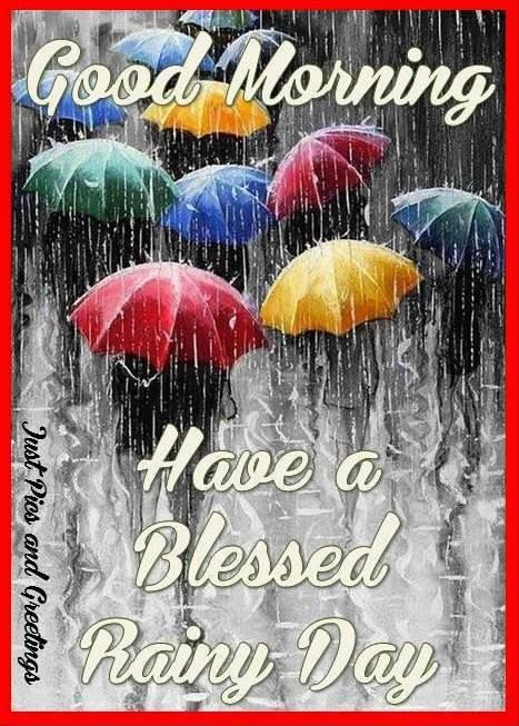 Good Morning Have A Blessed Rainy Day Pictures Photos And Images