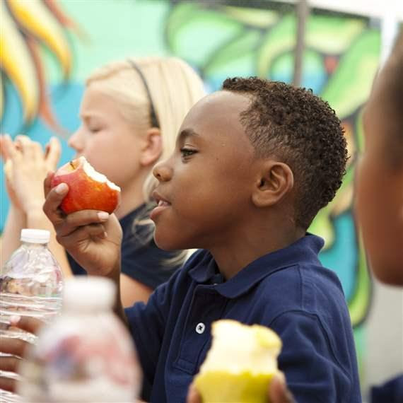 Healthy School Lunches Can Reduce Childhood Obesity and Diabetes