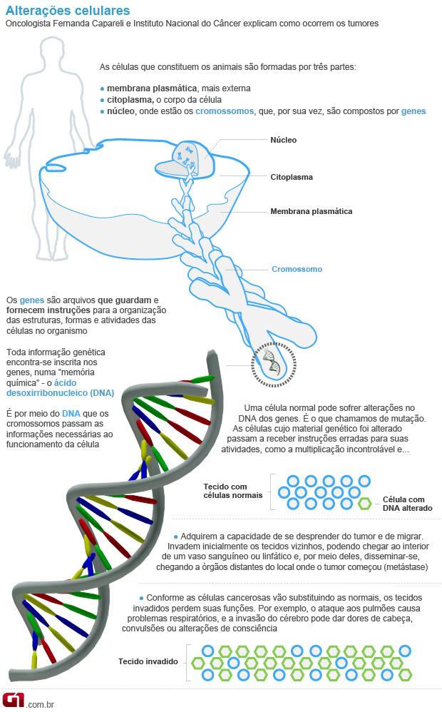 Dieta anticancer (Foto: Arte/G1)