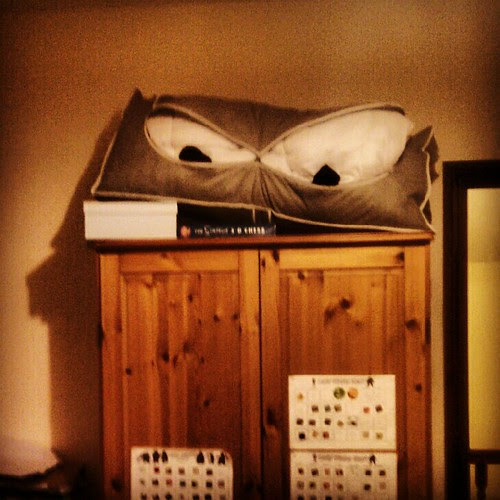 The monster on my son's wardrobe