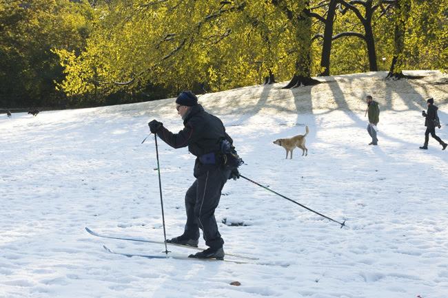 Skiing, Prospect Park, Brooklyn