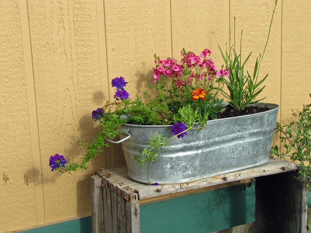 Spring Flower Planting