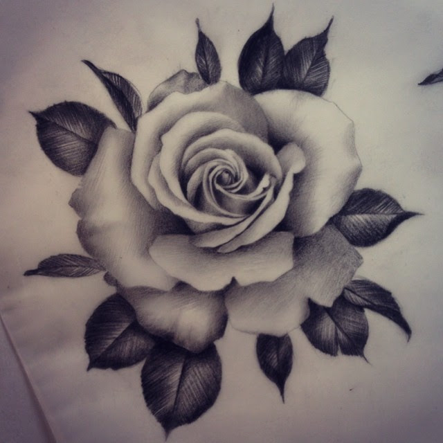 Pencil Drawing Of A Rose At Getdrawingscom Free For Personal Use