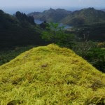 Jerome-Shaw-Aranui3-Marquesa-Islands-2010-115