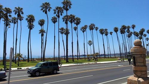 Walking Along Shore