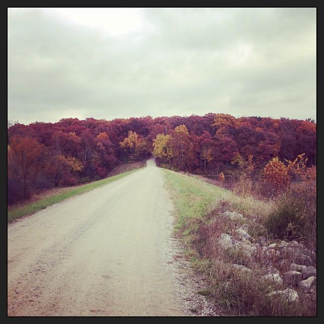 It's fall. :)