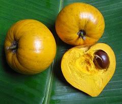 tiesa fruit