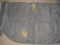 Megan's spotty towel
