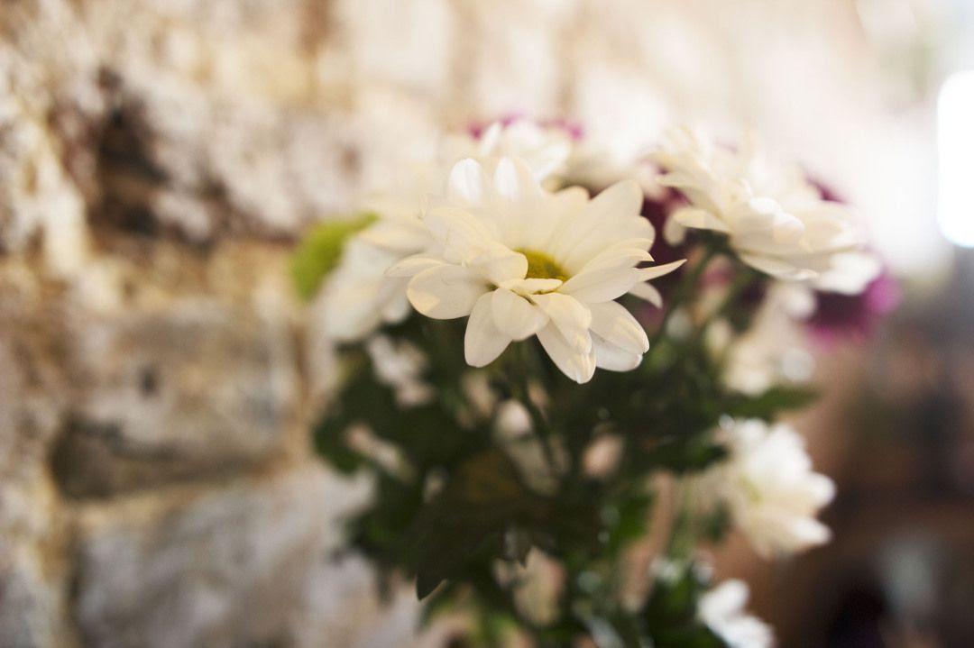 Introducir elementos naturales en la vivienda, vivir rodeados de flores y plantas. Foto de her couture life