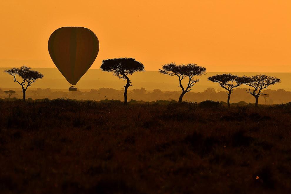 Воздушный шар в заповеднике Масаи Мара
