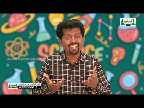 6th Science விசையும் இயக்கமும் அலகு 2 Kalvi TV