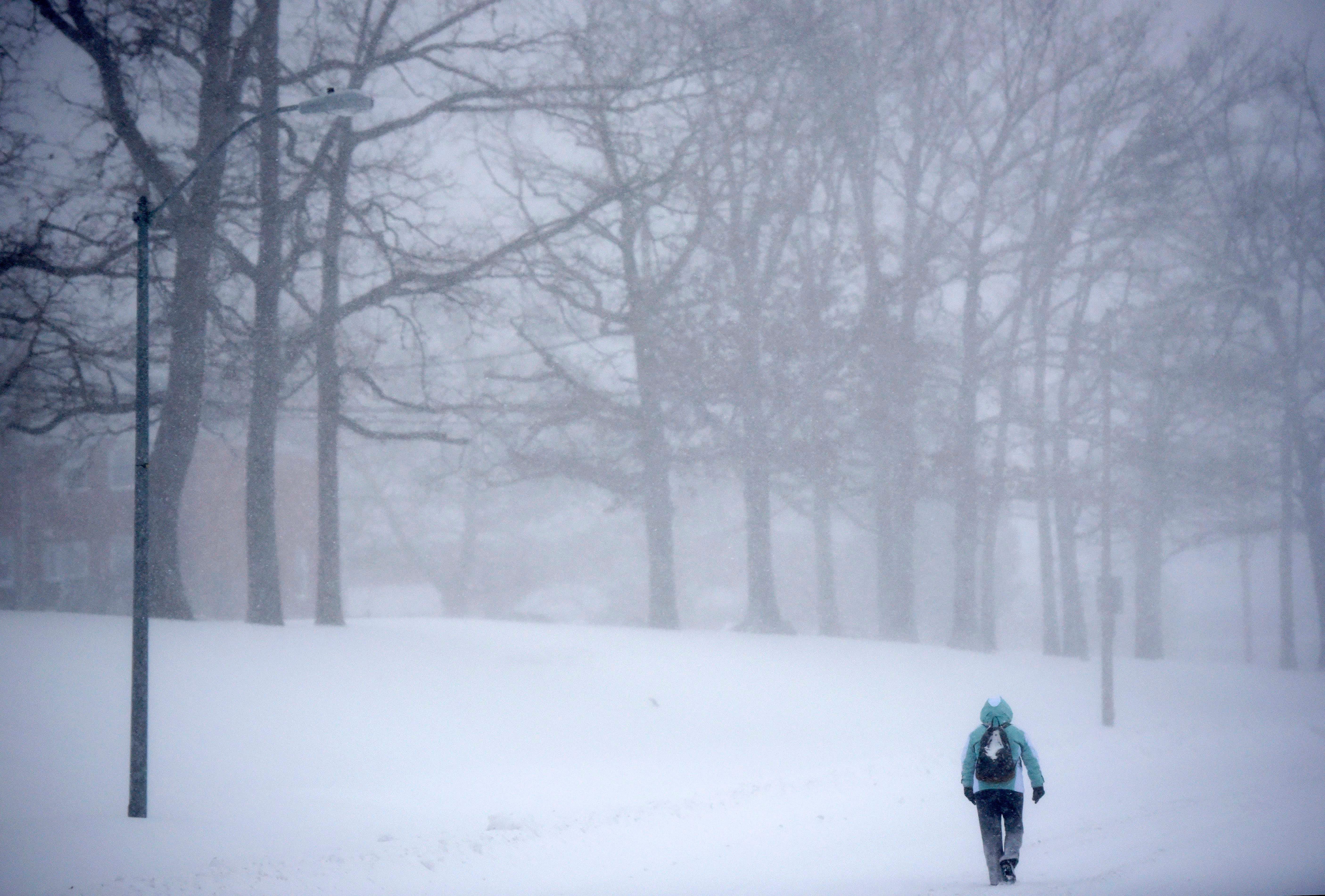 Maryland Snow Storm