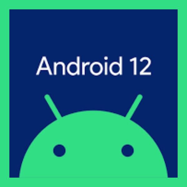 nueva funcion de android 12