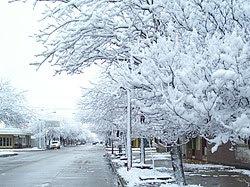 Invierno: Definición, Concepto, Significado, Qué es Invierno