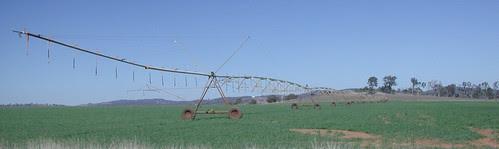 irrigationPractices