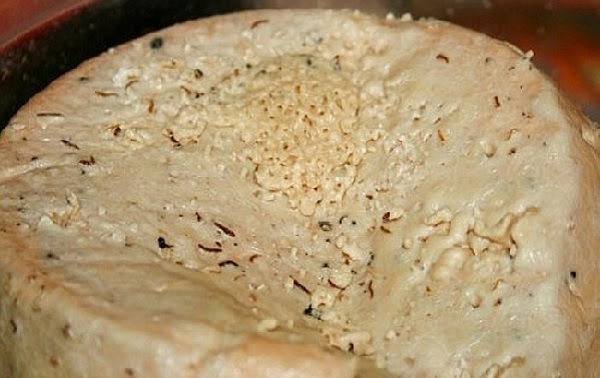 Casu Marzu - cheese with live larvae