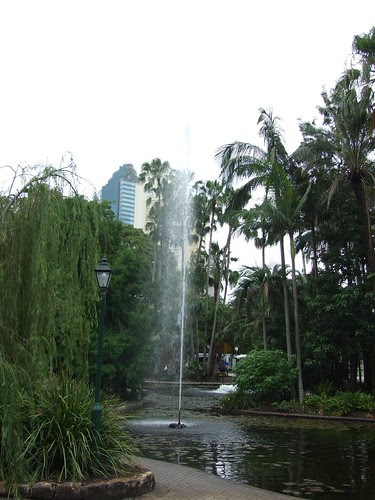 Brisbane City Botantic Gardens