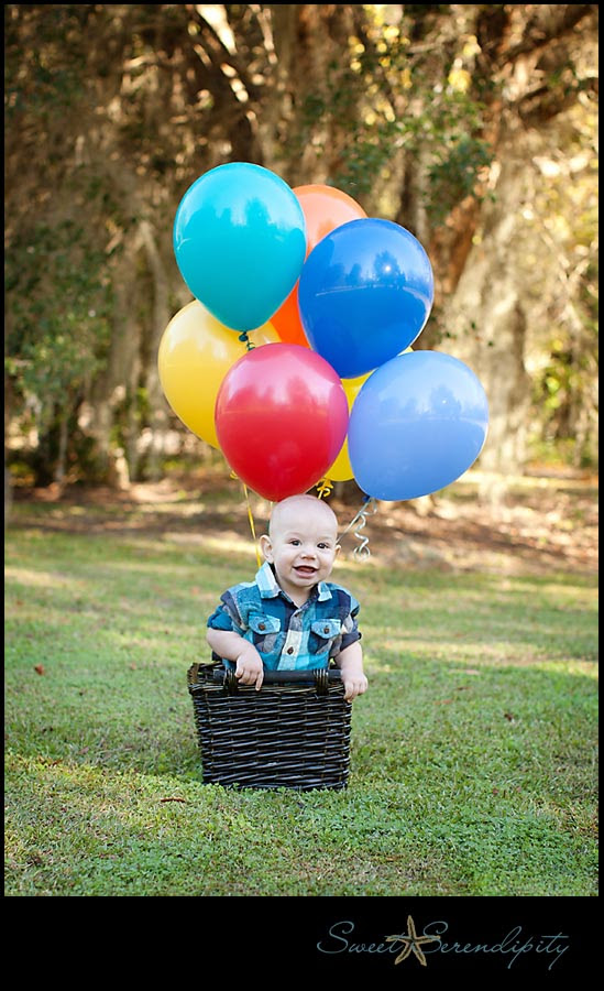 Milestones Baby Jameson One Year Gainesville Baby Photographer