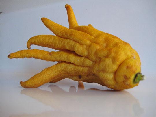 Perierga.gr - Παράξενα φρούτα