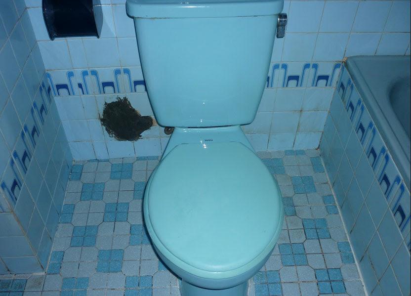 Cara Membersihkan Keramik WC yang Penuh Kerak The Gaptek