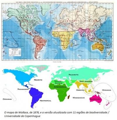 Mapa biogeográfico mundial é atualizado após 136 anos