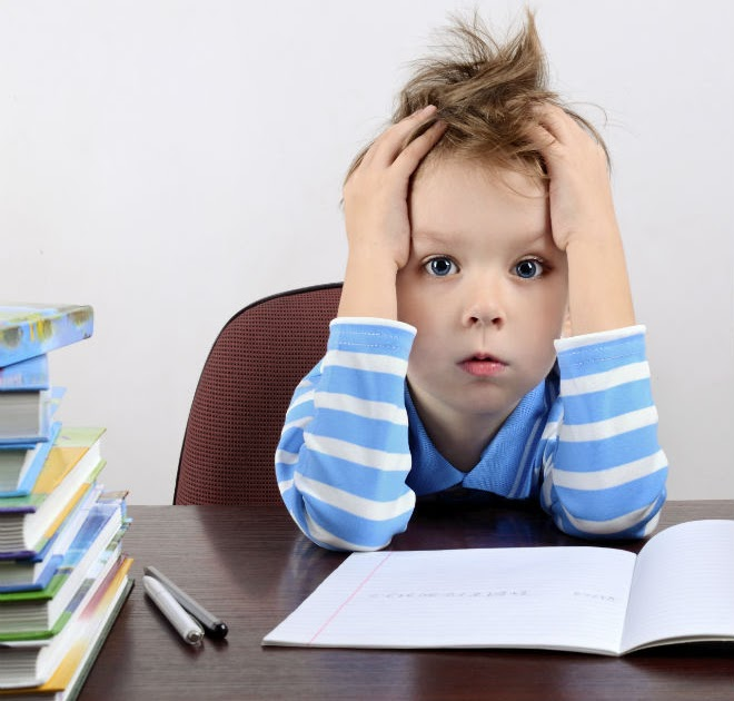 Student homework help