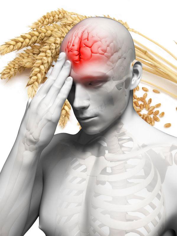 O grão que danifica o cérebro humano