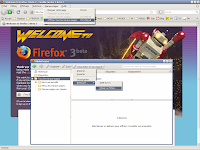 Firefox 3 beta 3 - Places 2