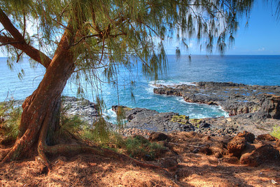 A nice place to stop and rest. Spouting Horn - Kuaui.