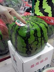 shapely fruits