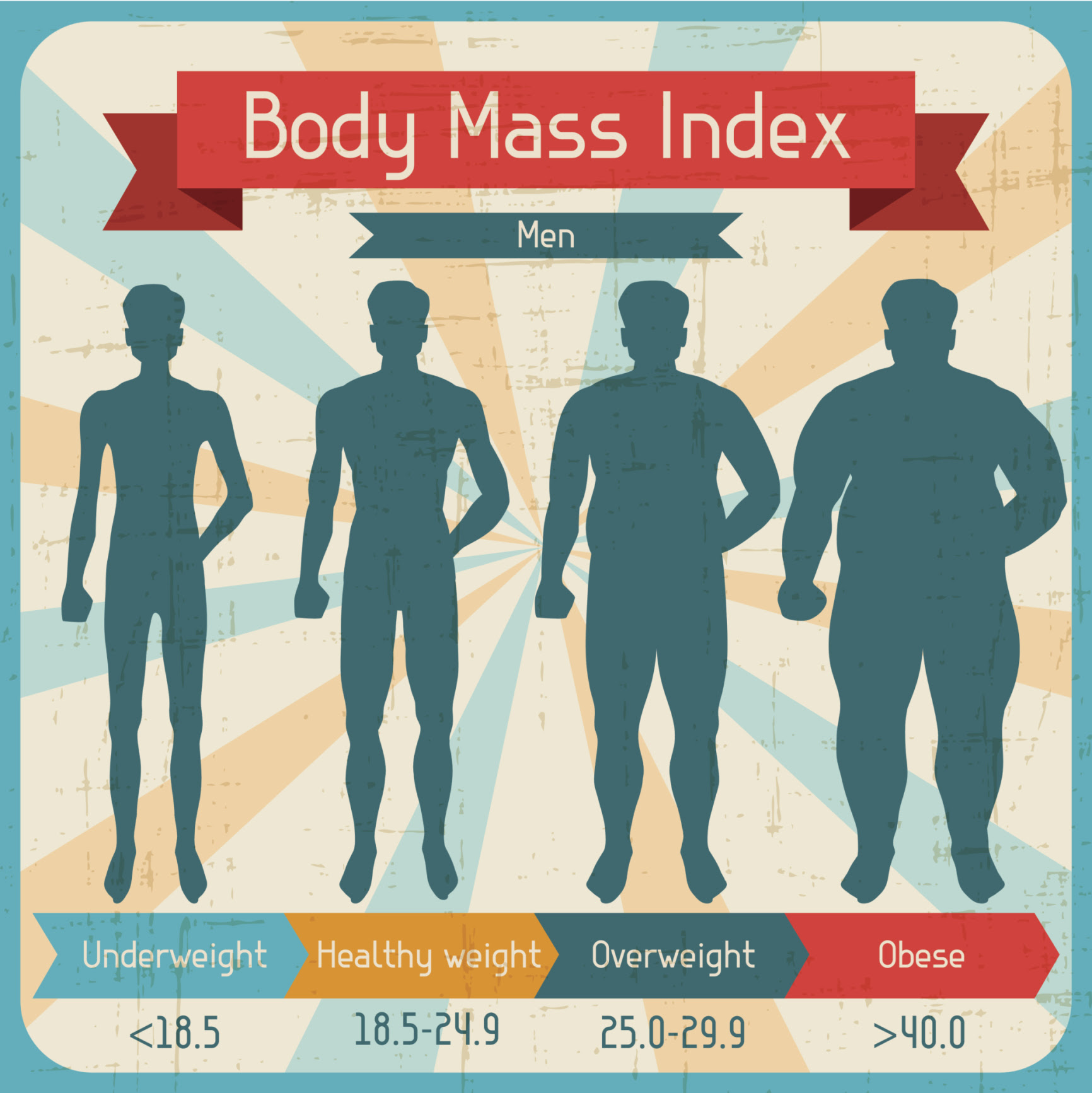 what's the difference between body fat percentage and bmi
