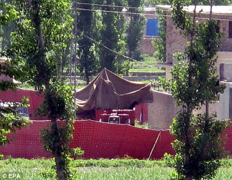 Lair: A large sheet covers the U.S. helicopter that crashed in the grounds of the compound where Bin Laden lived with his youngest wife and his trusted aides